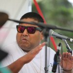 music in parks onehunga